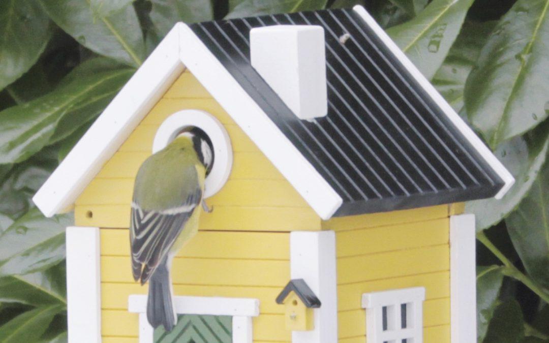 Wat je altijd al wilde weten over nestkastjes
